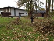 Der fældes træer 2 - 2014-11-03