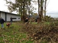 Der fældes træer 3 - 2014-11-03