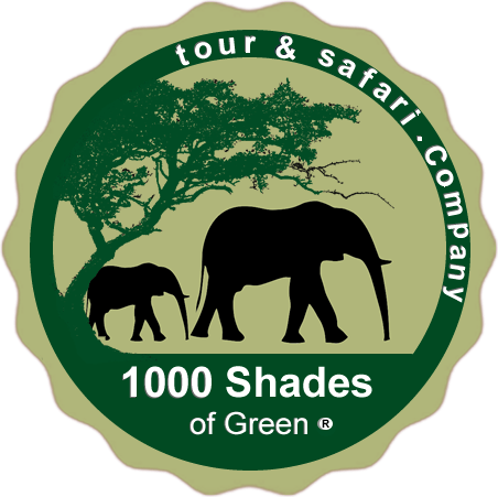 1000 Shades of Green Safaris