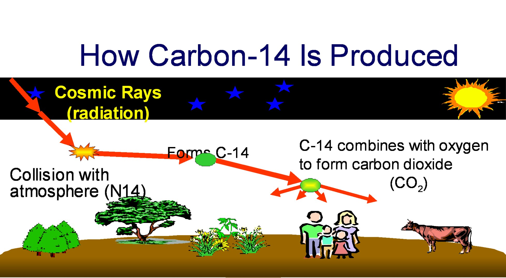 Carbon 14 Decaying Into Carbon 12 It S Not Exactly Science Is It