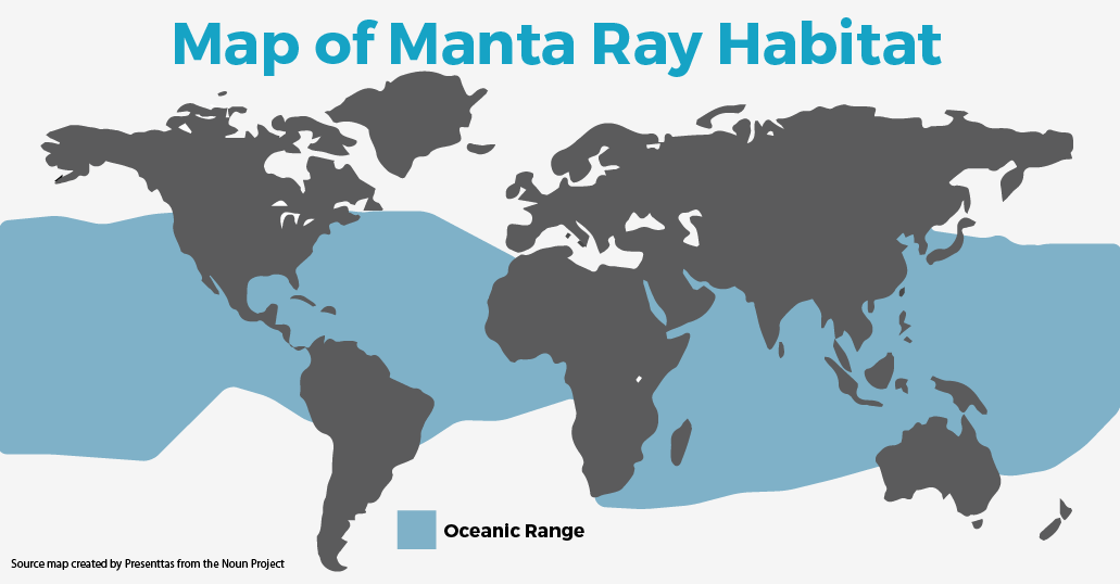 Manta Ray Habitat Map By SEEtheWILD Wildlife Conservation
