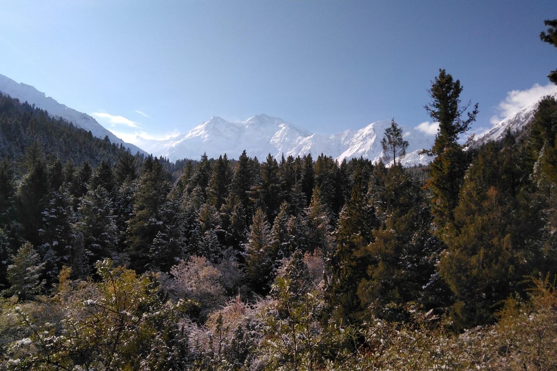 Fairy Meadows - Nanga Parbat View Trek