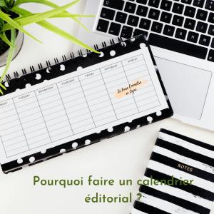 Artisan, entrepreneur, microentrepreneur : pourquoi devez-vous mettre en place un calendrier éditorial dans votre communication digitale?