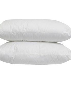 2 Pack hollow fiber pillows.