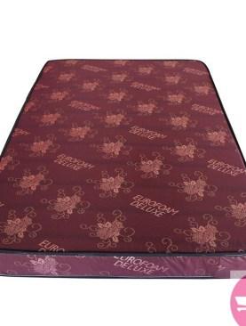 5X6/74*60*6 Euro foam brand new mattress.