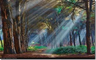 méditation blog se former a la divination