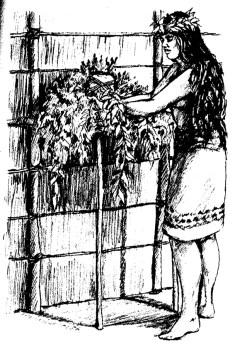 Altare dedicato alla Dea della Hula, Laka nelle Antiche Hawaii