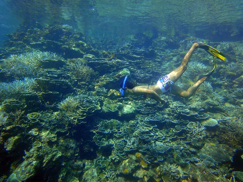 Schnorcheln Segeln In Phuket Katamaran Charter