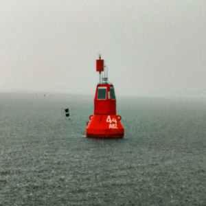 Segeln fürs Meer Wismar