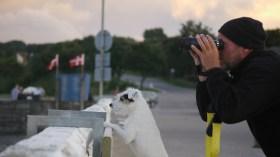 Wer ist neugieriger? Stephan Boden mit Hund beim Beobachten © Digger Hamburg