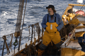 Arved Fuchs, Dagmar Aaen, Lofotfischer, Expedition