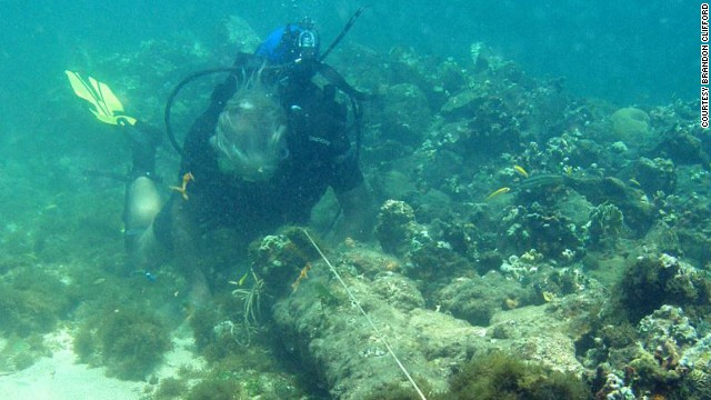 Ein Haufen Steine, hier noch mit Kanone – U-Wasser-Aufnahme aus dem Jahre 2003 © clifford