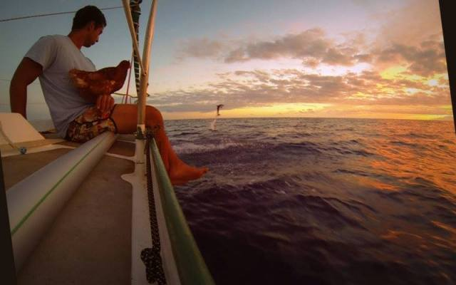 Gemeinsam mit den Delfinen Freundschaft schließen © soudée