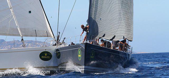 Kollision, Maxi Yacht,