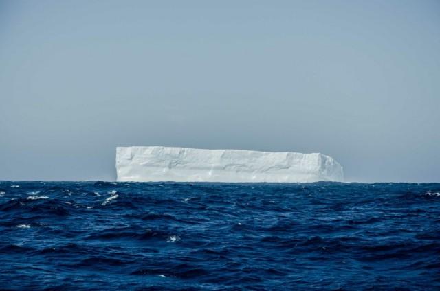 Eisberg IDEC