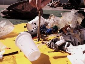 Meeresverschmutzung, Plastikmüll, Seabin, OceanCleanUp