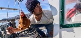Blauwasser, Huhn