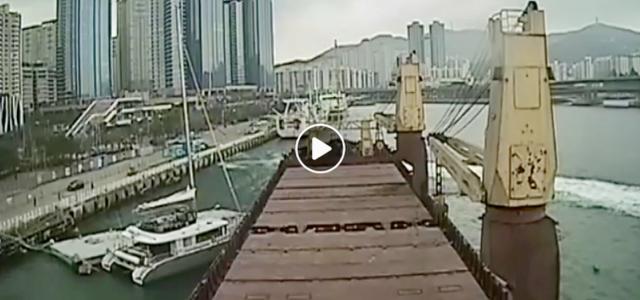 Kollision, Berufsschifffahrt, Katamaran