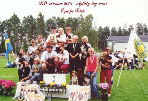 SM-GULD!!! 2001