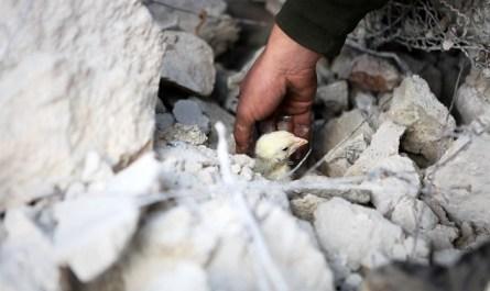 Минобороны РФ сообщило о гибели свыше 300 военных и мирных жителей в Идлибе