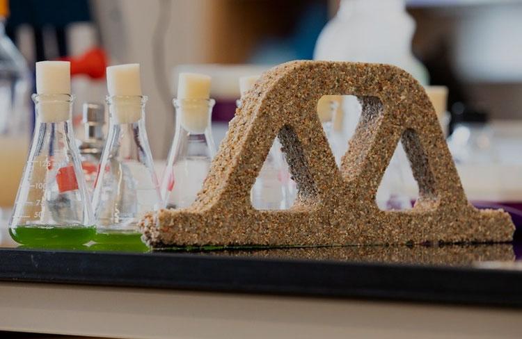 Учёные создают «живой бетон», который размножается и лечит трещины