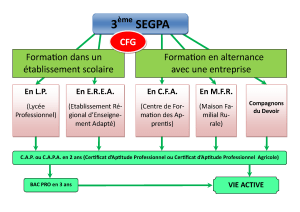 organigramme-et-apres_page_1