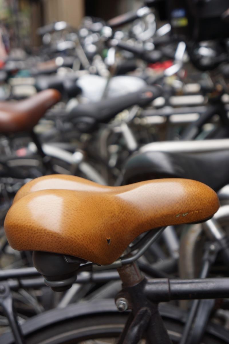Rowery, wszędzie rowery. Ponoć zasłane jest nimi całe dno kanałów.