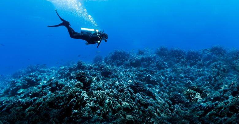 seguro viagem para mergulho