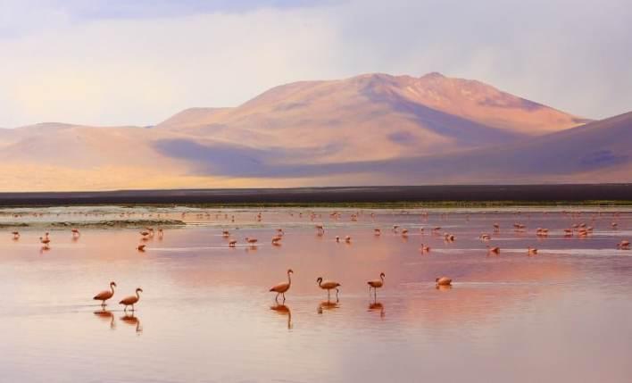 seguro viagem viajanet bolivia