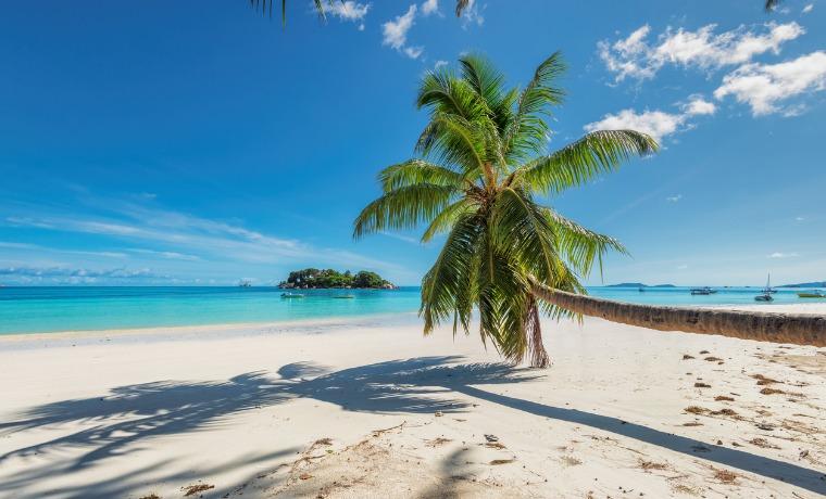 seguro viagem Jamaica lagoa azul