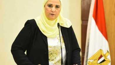 Photo of وزيرة التضامن:علاج 31 ألف مريض إدمان خلال الثلاثة أشهر الأولى من عام 2020
