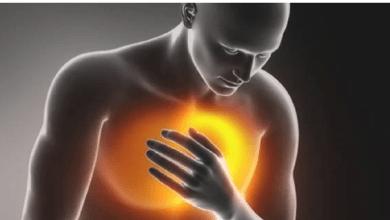 Photo of أطعمة تحافظ على صحة القلب وتحسين الدورة الدموية