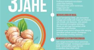 Khasiat dan manfaat Jahe