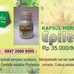 Terapi Obat Herbal Penyakit Epilepsi