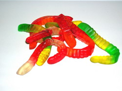 image of worms on the table - illustrating a metaphor