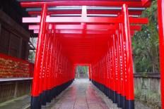 Torii, Inuyama