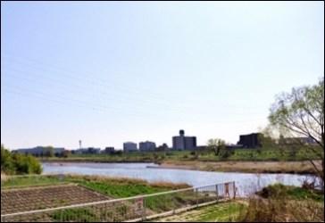多摩川ピラニア11