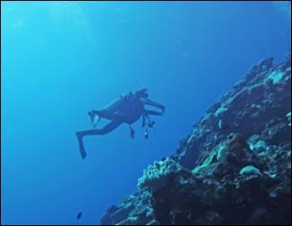 沖縄年末年始海11