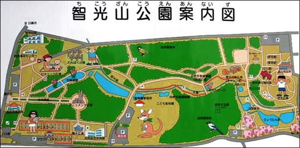 11智光山公園埼玉ヒラタクワガタ