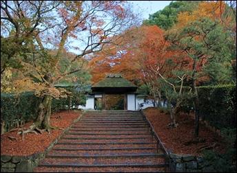 鈴虫寺13