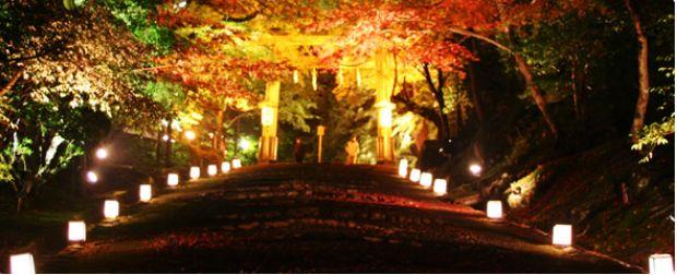 日吉大社の紅葉ライトアップ