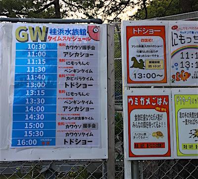 桂浜水族館GWスケジュール