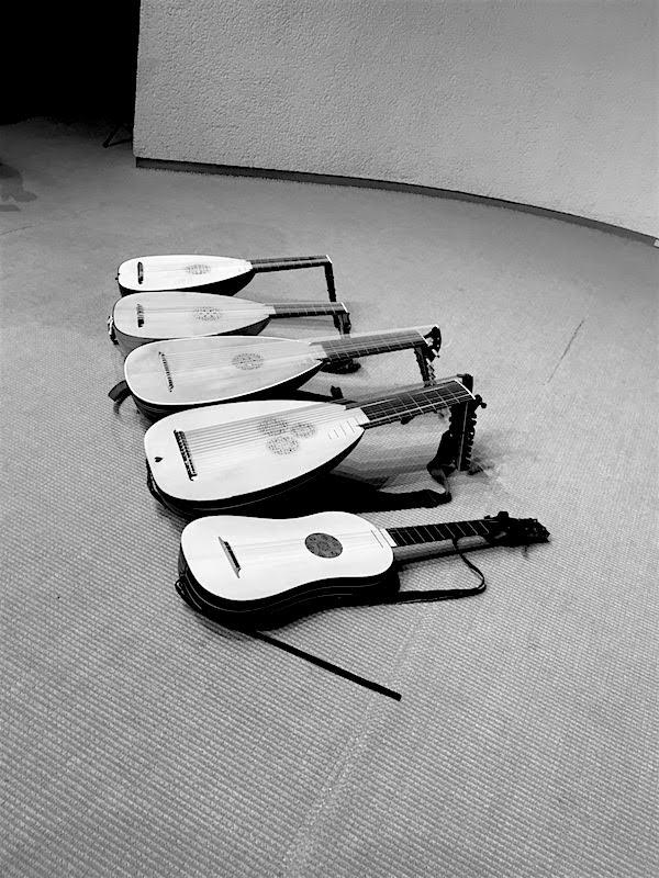 日本リュート協会会員コンサート楽器写真3