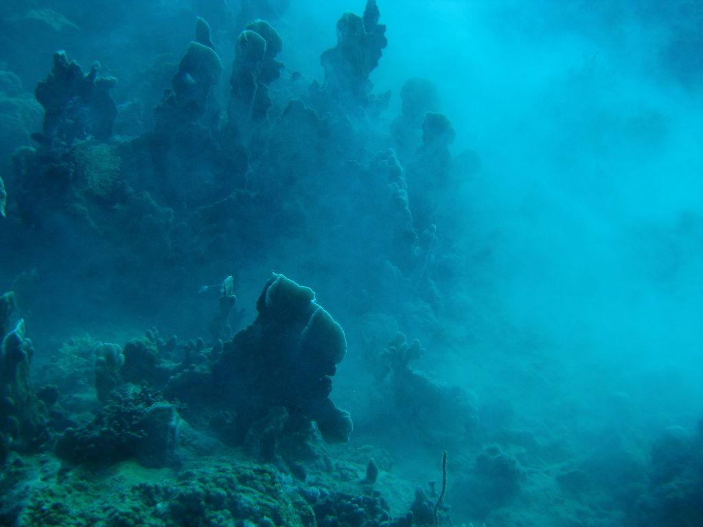 15 Mystery dive