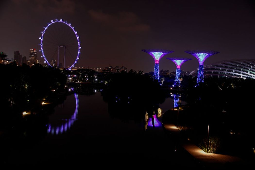 3 Singapore Flyer Gardens by the bay