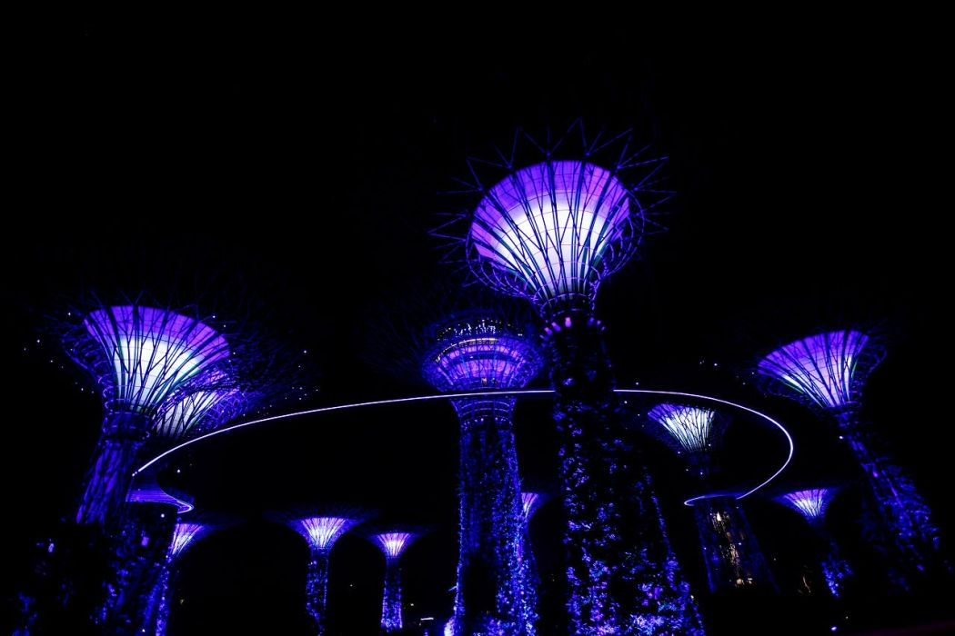 5 Gardens by the bay Singapore
