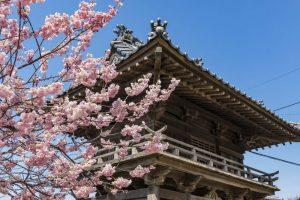 近くの『禅寺』周遊記Vol.5~萬松山瑞龍寺