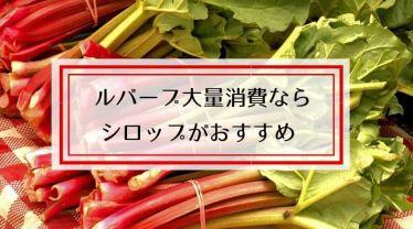 ルバーブシロップ(ジュース)のレシピ!ジャム以外の大量消費におすすめ
