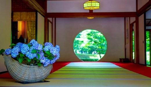 明月院の紫陽花の時期と見頃は?混雑状況と鑑賞時間についても紹介