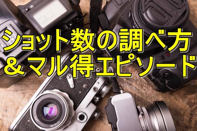 【カメラのショット数】シャッター回数の調べ方。(更新版) ebay輸出,カメラ転売においては超必須。